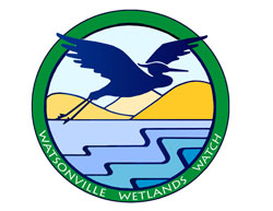 Watsonville Wetlands Watch - click here to visit the organization website